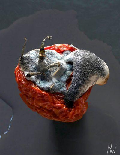 12. Tomate
