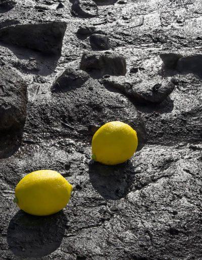 D. Zitronen